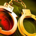 'आपराधिक घटना परिवार र आफन्तबाटै'
